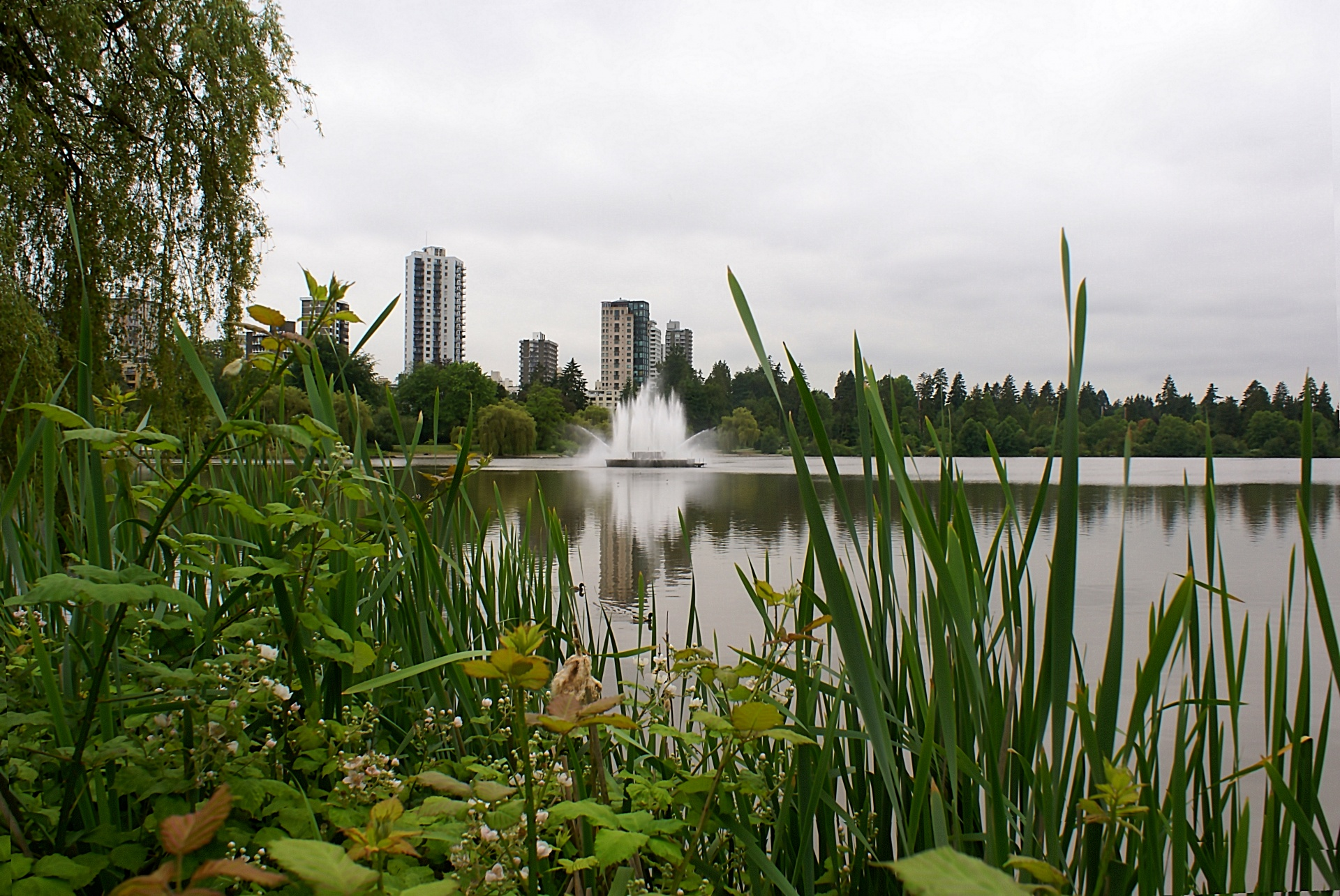 lost-lagoon-stanley-park-vancouver